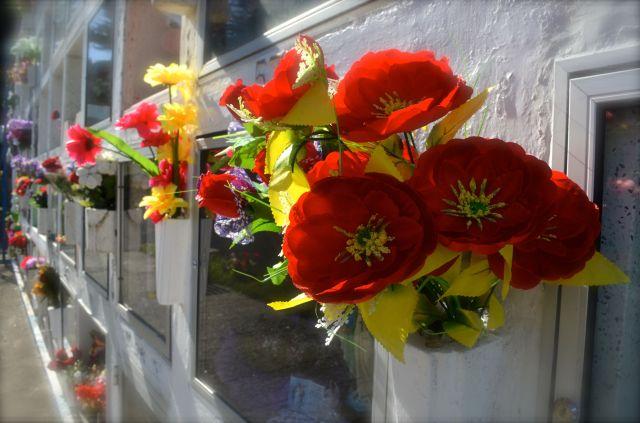 Cemetery Punta Arenas flowers
