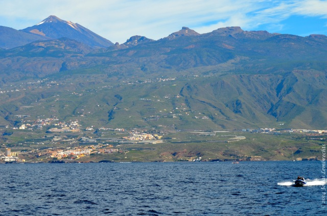 Tenerife - 494