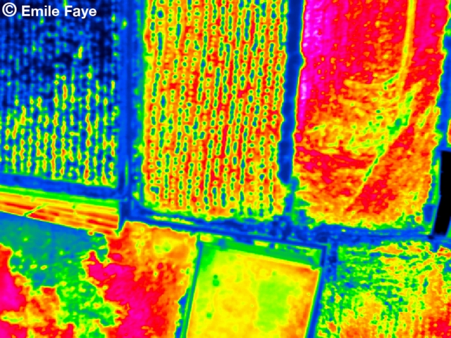 Agricultural Thermal Landscape