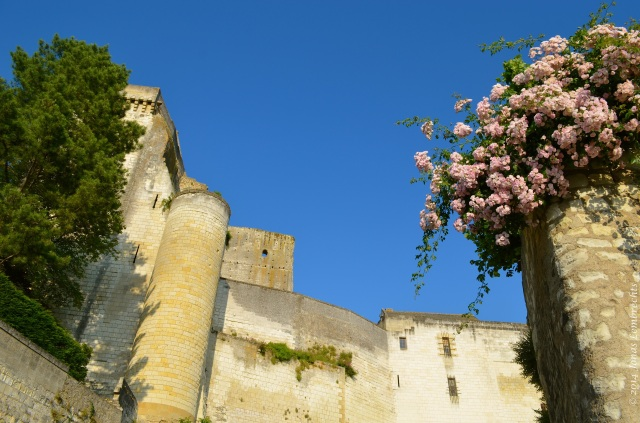 Castle Loches with roses