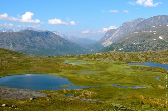 Marsh in a valley in Northern Norway