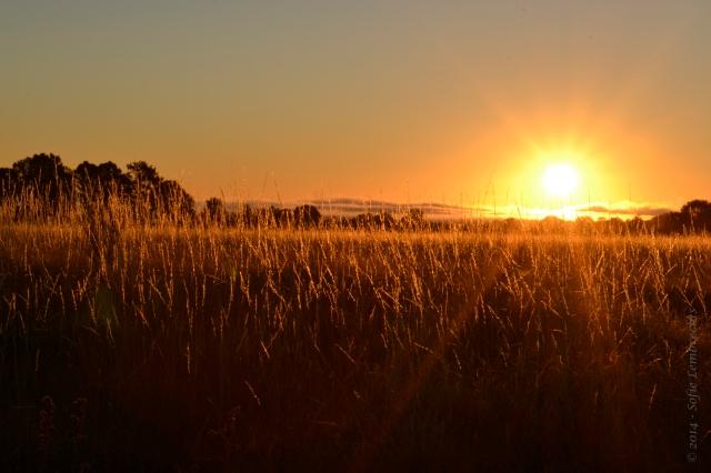 Spain sunset
