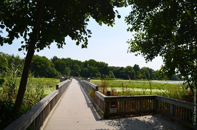 Boardwalk at John Heinz national wildlife refuge