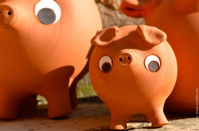 Terracotta pig