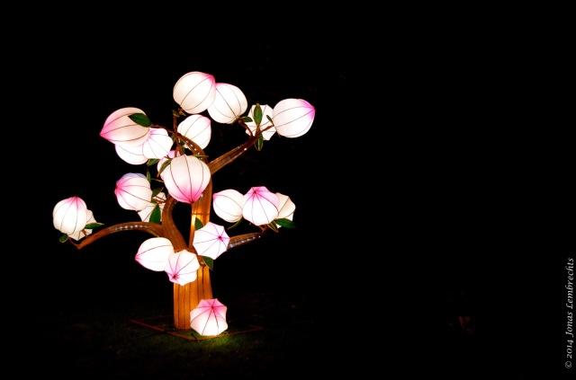 China Light Zoo Antwerp spring tree