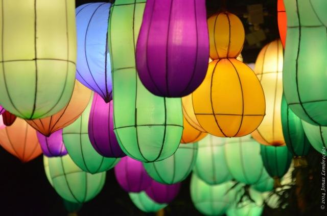 China Light Zoo Antwerp