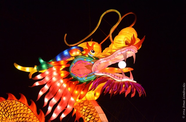 China Light Zoo Antwerp dragon