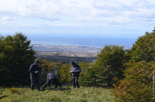 Fieldwork overlooking Punta Arenas in southern Chile.