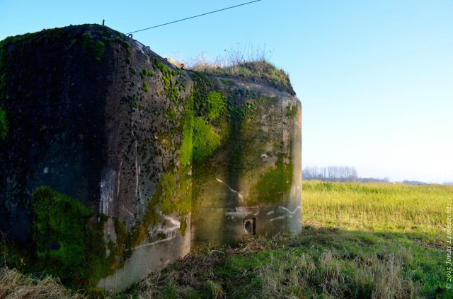 Bunker with mosses