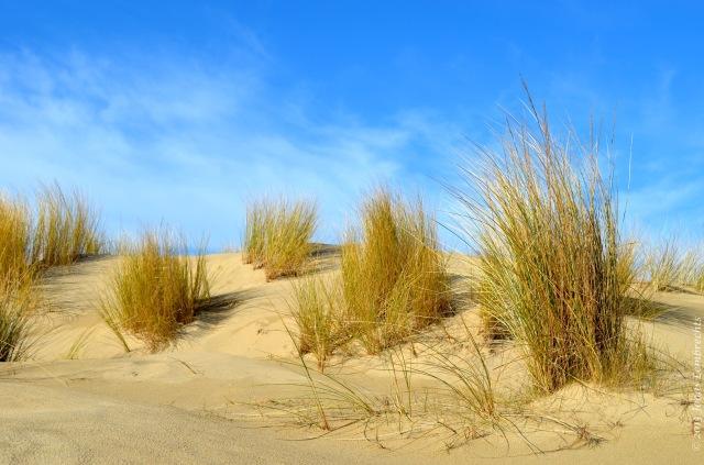 Bray-Dunes, Northern France