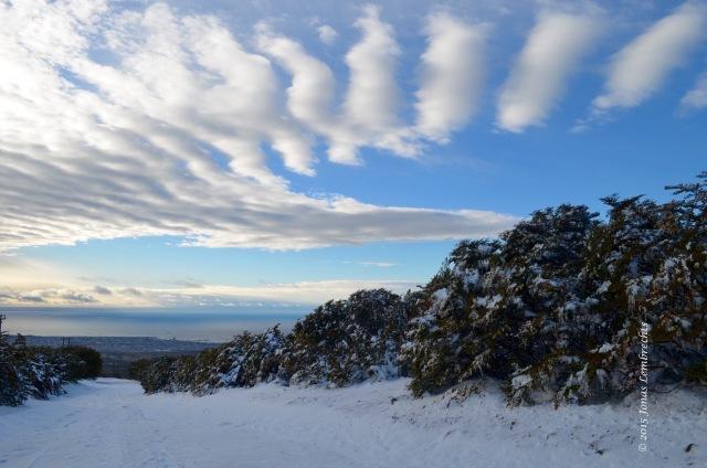 Top of Cerro Mirador, Punta Arenas