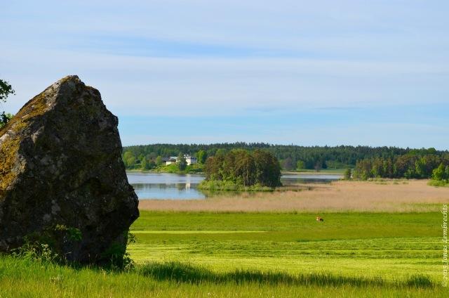 Rough rock in soft field