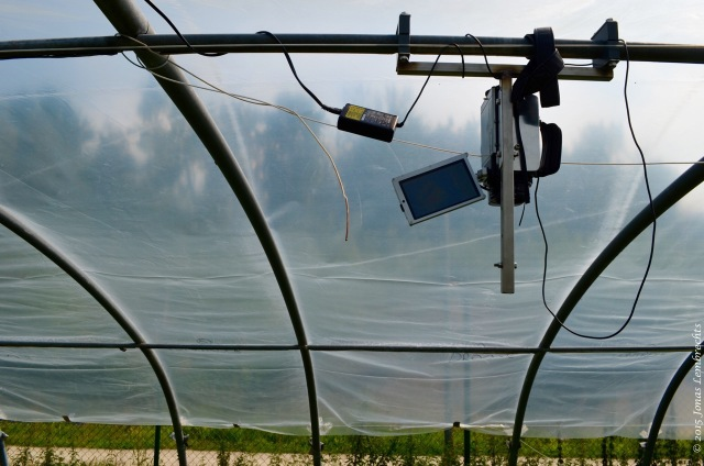 Greenhouse with thermal camera