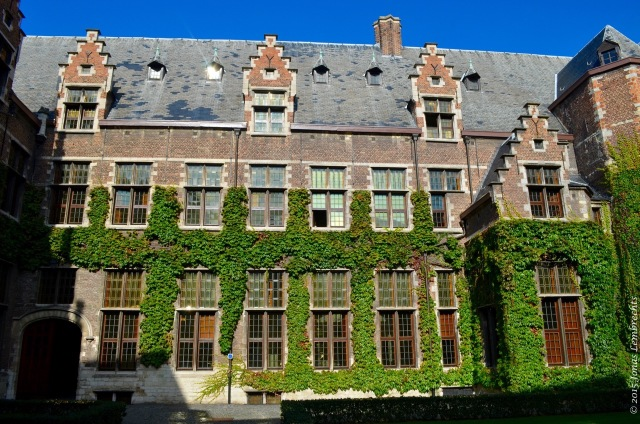 Old buildings of the university of Antwerp