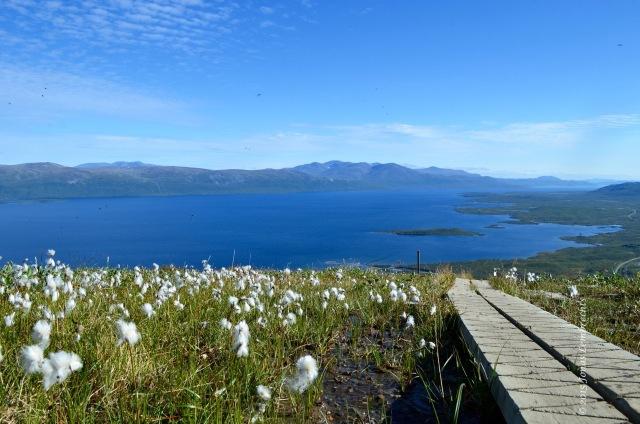 View on Torneträsk lake