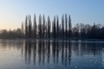 Frozen lake in Parc Saint Pierre