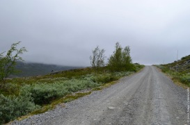 Norwegian road