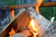 Surviving the night with a campfire