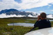 Birdwatching in a mountain marsh