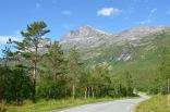 Valley road in Skjomen