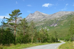 Valley road in Skjomen