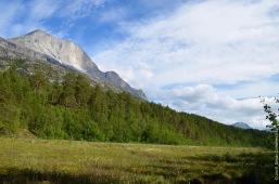 Marsh and mountain