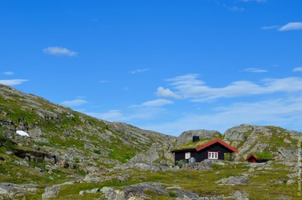 Mossy mountain hut