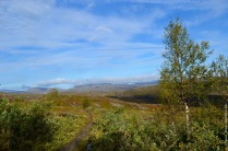 abisko-autumn-46