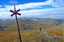 Installing the plots of our trail observations on top of mount Nuolja