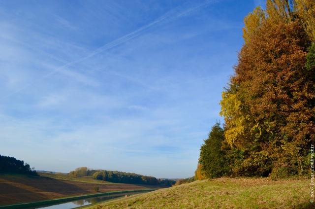 falling-leaves-4