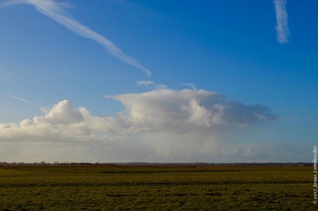uitkerkse-polder-18