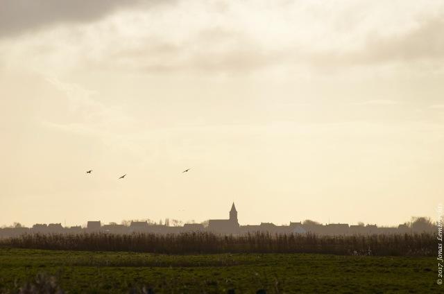 uitkerkse-polder-2