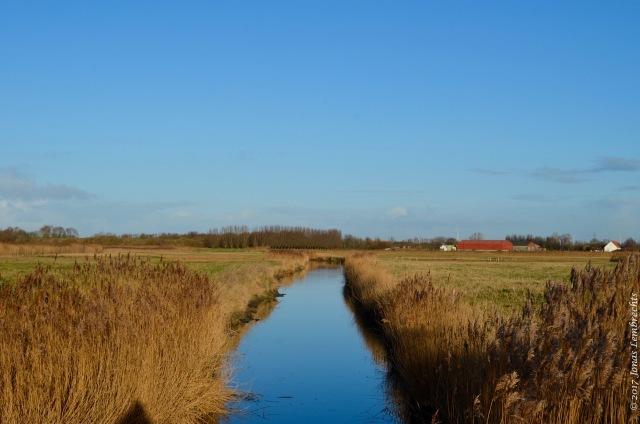 uitkerkse-polder-20