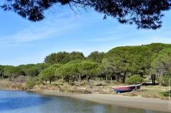 A typical lagune