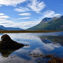 Skjomen fjord
