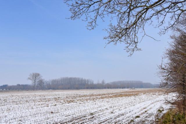 Winter - 5