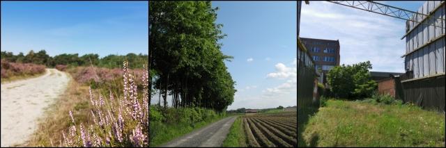 NatureOrNot (1)