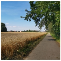Belg ziet natuur in zijn gemeente achteruitgaan