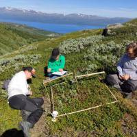 Fieldwork views